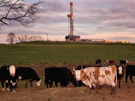 Greenpeace: Landowners can work together to block fracking 'trespass' | Fracking | Scoop.it