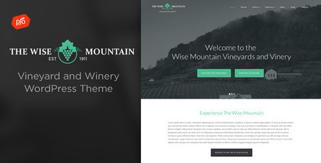 Wise Mountain - Vineyard and Winery Theme (Restaurants & Cafes) Download   Wordpress Themes Download   Scoop.it