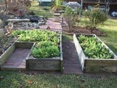 Winter in the garden: Pruning and composting good ways to prepare for spring | Best Home and Garden | Scoop.it