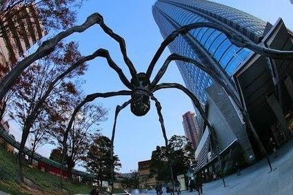 Après l'attaque «zombies», l'attaque des araignées géantes | Mais n'importe quoi ! | Scoop.it