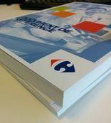 Carrefour n°1 des aliments bio en France, Plassat payé comme un joueur du PSG… et autres pépites cachées dans son rapport annuel   Carrefour Veille DD   Scoop.it