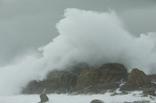 Enezgreen - Actualité légale - Le tapis de vagues : exploiter les vagues océaniques pour alimenter nos maisons   Equipements durables sports outdoor   Scoop.it