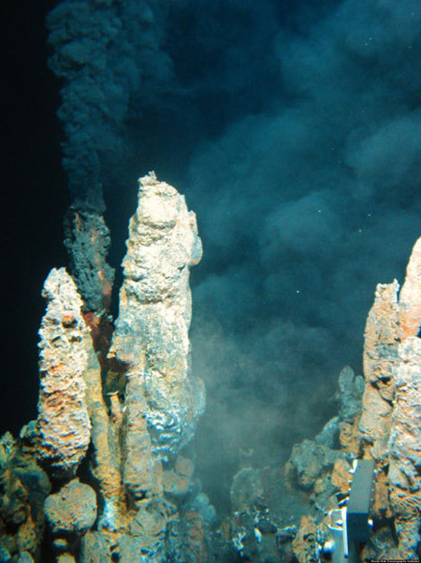 Microbes' Rocket Fuel Metabolism Sheds Light On Ancient Life - Huffington Post | Ancient Origins of Science | Scoop.it