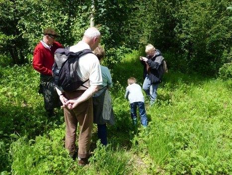 Les berges de l'Oise à Maurecourt | Environnement, paysage et biodiversité | Scoop.it