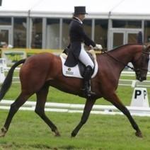Ramsay Family Purchases Jonelle Richards' Olympic Mount Flintstar   Red Horse News   Scoop.it
