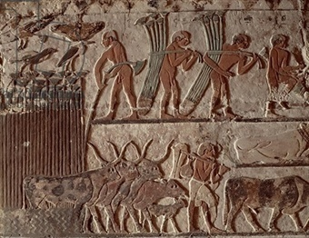 Part 1 of What Evidence is there for the Daily Lives of the Ancient ... | Ancient Egyptian World | Scoop.it