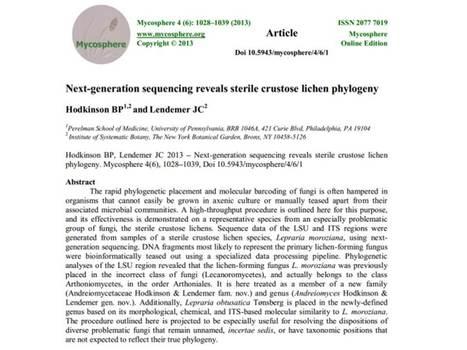 Next-generation sequencing reveals sterile crustose lichen phylogeny | Lichen systematics | Scoop.it