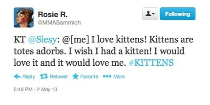 The Kitten Setting: An Experiment | Make Me a Sammich | Scoop.it