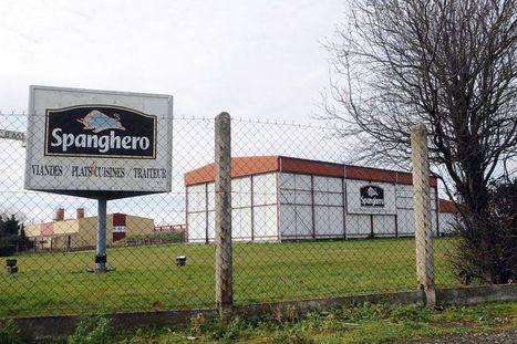 Après le cheval, 57 tonnes de mouton prohibé retrouvées chez Spanghero | Crise Alimentaire | Scoop.it