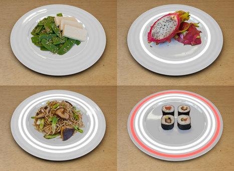 [Eng] Les assiettes Fukushima vous indique le niveau de radioactivité dans votre repas | DVICE | Japon : séisme, tsunami & conséquences | Scoop.it