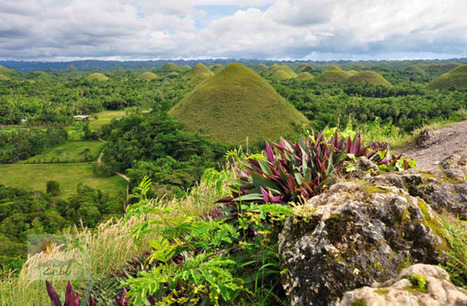 Have a look at Tropical Islands of Cebu Philippines   Holiday Destination   Scoop.it