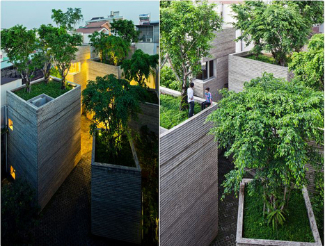 Houses with trees on terrace by Vo Trong Nghia Architects | Today's Modern Architects and Architecture | Scoop.it