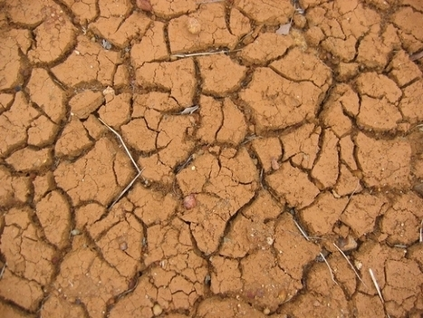 Climate Change and Failed Seasons May Put African Small-Scale Farmers at Risk - Science World Report | biodiversity | Scoop.it