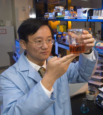 Researchers turn corn stover into amylose starch | MAIZE | Scoop.it