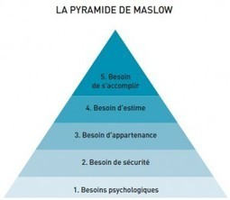Neurosciences : ce qu'elles apportent au management | Le manager de l'avenir.... | Scoop.it