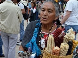 """Mexico Celebrates """"Carnival of Corn"""" and Rejects Monsanto 