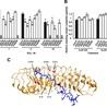 Bioinformatics, Comparative Genomics and Molecular Evolution