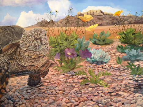 How to Paint... Rocks | Wildlife Art by: Laura Curtin | Good News for Artists | Scoop.it