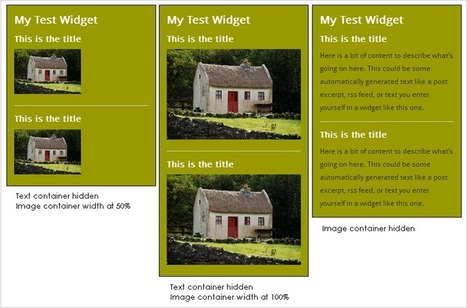 How to Add Custom Styles to WordPress Widgets | Blogging | Scoop.it