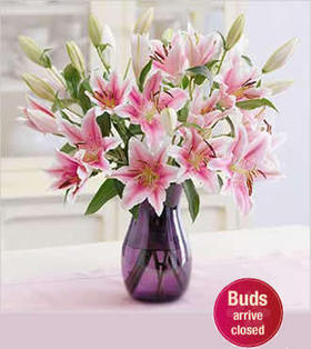 4 stem Pink Stargazer deliver to your Mother in Law on Christmas Day – Pink_Stargazers_Bouquets#011 | mother's day flower | Scoop.it