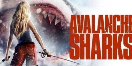 Avalanche Sharks : plus fort que les dents de la mer voici les dents de la montagne ! | montagne | Scoop.it