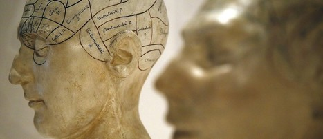 Are the brains of creative people different? | Positive Psychology | Scoop.it