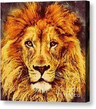 Lion Of Africa Mixed Media by Zeana Romanovna - Lion Of Africa Fine Art Prints and Posters for Sale | Romanovna-Art-Prints | Scoop.it