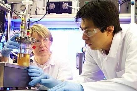 Sécurité sanitaire : Nestlé ouvre un centre de recherche en Chine | agro-media.fr | Actualité de l'Industrie Agroalimentaire | agro-media.fr | Scoop.it