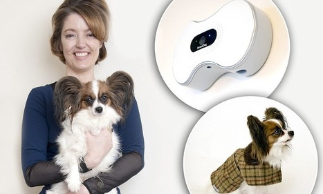 Worried your pet's pining for you? Now he can call on the dog-and-bone | Kickin' Kickers | Scoop.it