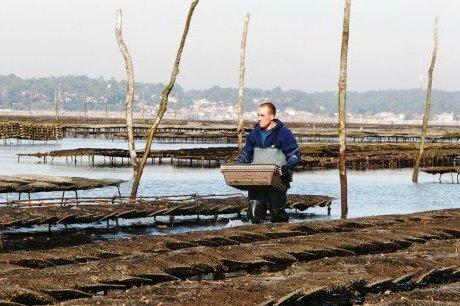 Le premier Mondial de l'huître | Agriculture en Gironde | Scoop.it