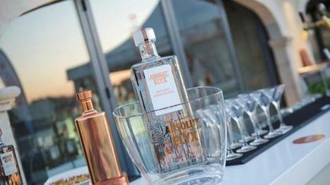 New luxury vodka launched in Malta | Hire Cars in Malta | Scoop.it