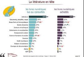 Le Blog du LABO BnF: Tour d'horizon des chiffres liés aux livres numériques en France | edition | Scoop.it