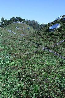 Techos verdes / vivos | techo inclinado con jardin su construccion | Scoop.it