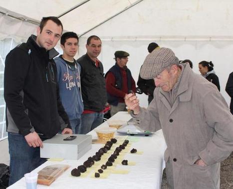 Tournon-d'Agenais. La truffe révèle son arôme   Patrimoine Fumel - Vallée du Lot   Scoop.it