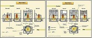 Centrale nucléaire de Fukushima Daiichi : toutes les données sur les réacteurs et les combustibles | Le blog de Fukushima | Japon : séisme, tsunami & conséquences | Scoop.it
