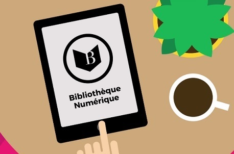 Ebooks : un autre modèle économique pour les bibliothèques à explorer ? | François MAGNAN  Formateur Consultant | Scoop.it