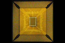 DARPA, IBM Neurosynaptic Chip and Programming Language Mimic the Brain   Cosmos and us   Scoop.it