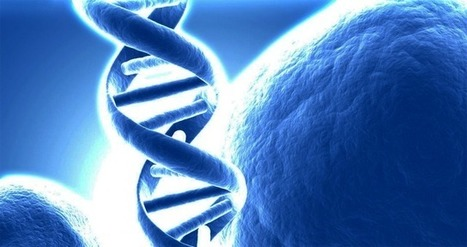 33rd Square   Synthetic DNA, XNA May Allow Synthetic Lifeforms   Science Matters   Scoop.it