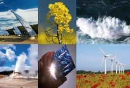 Le développement des énergies renouvelables, où en est-on ? - Le Coq Vert | Lecoqvert | Scoop.it