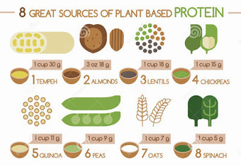 Plant-Based Protein Has Gone Mainstream | Useful Fitness Articles | Scoop.it