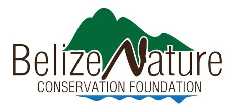 Belize Nature Conservation Foundation   Sustainable Conservation 1   Scoop.it