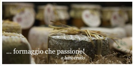 Local Home-made Cheeses from Fontegranne - Belmonte Piceno - Fermo | Hideaway Le Marche | Scoop.it