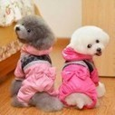 Caring for Clothes of Small Dogs | Pets Clothing | Scoop.it