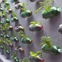 Urban Vertical Garden Built From Hundreds of Recycled Soda Bottles | The Blog's Revue by OlivierSC | Scoop.it