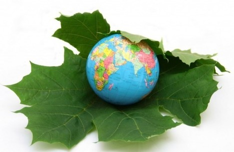 Making Business Sense Of Sustainable Development - Live Trading News   Inclusive Business and Impact Investing   Scoop.it