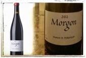 Morgon 2013 Maison B. Perraud (Domaine des Côtes de la Molière) - Into the Wine   Into the Wine   Scoop.it