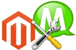 Gain Advantages Through Your Online Business Store With Magento Development | Ecommerce Development | SEO Company India – TGRPL | Scoop.it