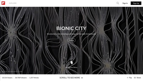 Bionic City magazine, Sept 2015 | Bionic City | Scoop.it