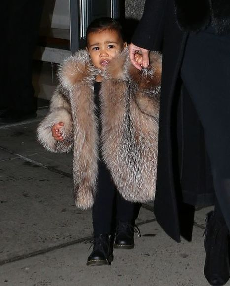 Kim Kardashian and Kanye West vow to only wear fur made from ROADKILL | Animals R Us | Scoop.it