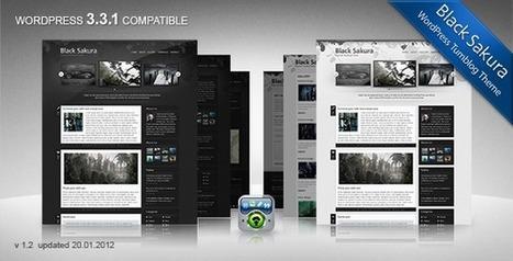 50 Best of Best Responsive WordPress Magazine Themes of 2013 | Magento | Scoop.it